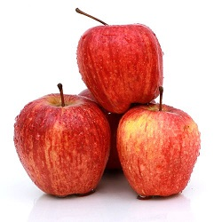 Apple Shimla