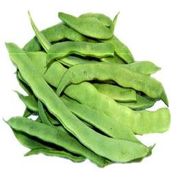 Flat Bean Sem