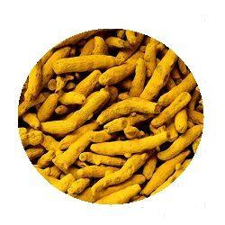 turmeric-haldi-sabut