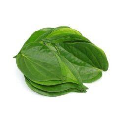 Betel Leaf Paan Patta
