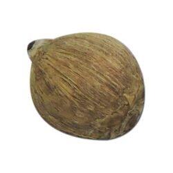 Pooja Hawan Nariyal Dry Coconut