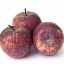 Apple Kashmiri